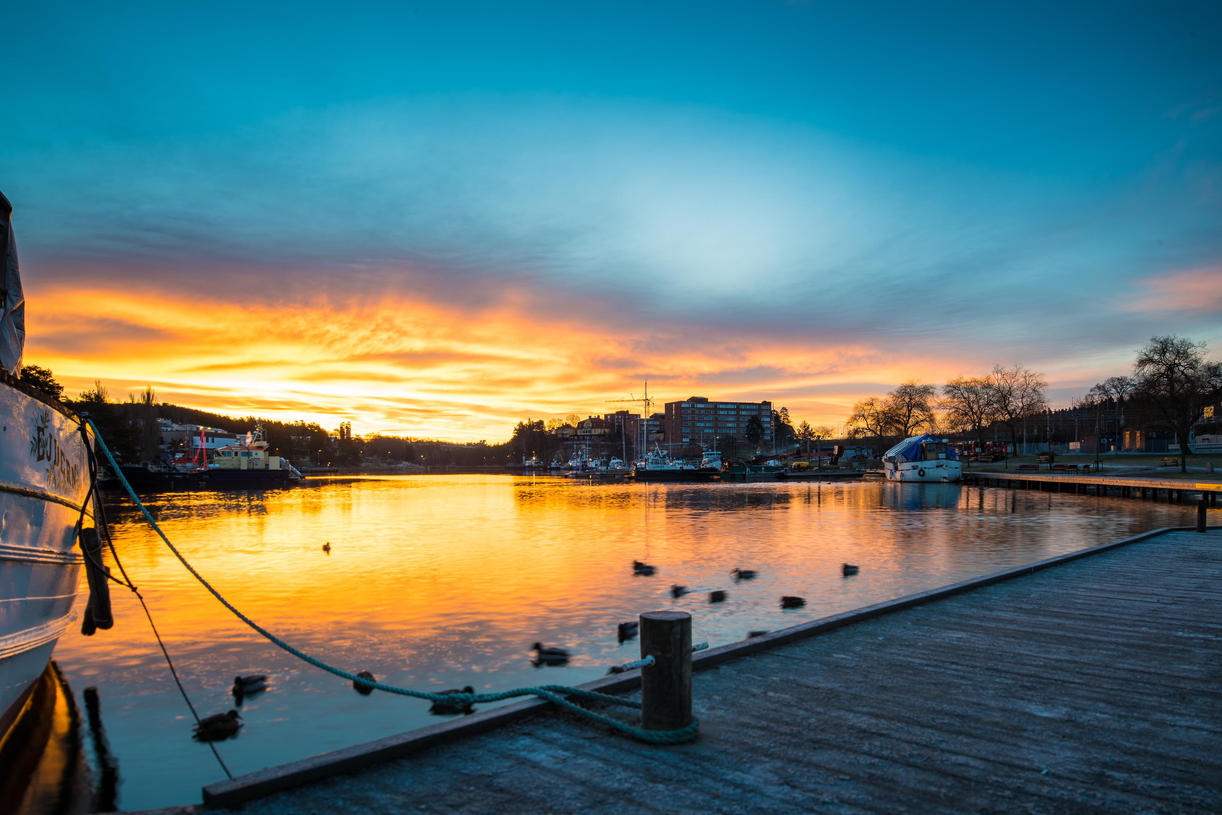 Södertälje soluppgång, ejdern & gästhamn